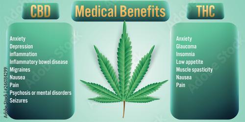 CBD,THC Cannabis Medical Benefits background.Vector Illustration Canvas Print