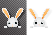 Isolated Easter Cute Bunny Rabbit Hole Paws Design Transparent Background Template Vector Illustration