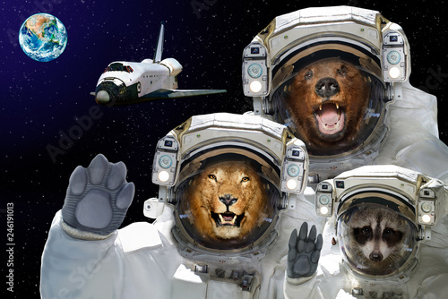 Space is available to all. Bear, raccoon and lion in space against the background of the space shuttle and the planet Earth. Elements of this image furnished by NASA. - 246191013