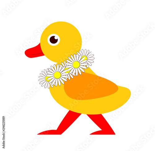 Photo  duckling with daisy wreath