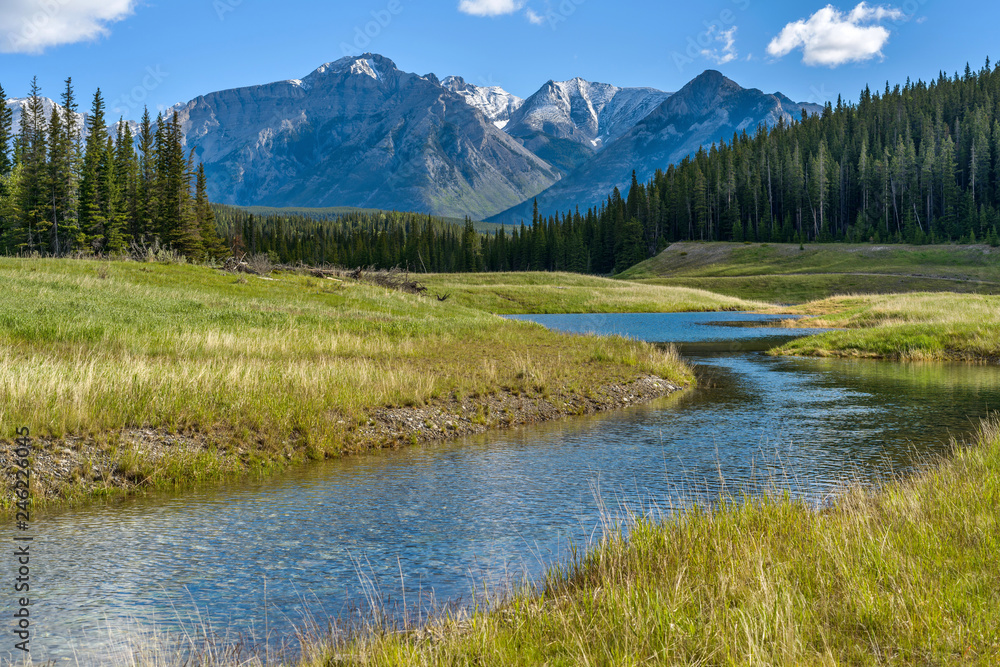 Fototapeta Mountain Creek - A Spring morning view of a clear creek winding through green meadow and dense forest at base of Mt. Astley, Banff National Park, Alberta, Canada.