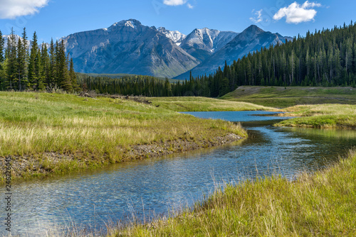 Canvas Print Mountain Creek - A Spring morning view of a clear creek winding through green meadow and dense forest at base of Mt