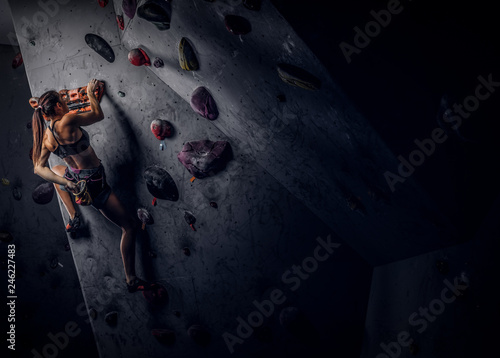 Fotografie, Obraz  Back view of a young sporty woman climbing on practical rock wall indoors