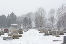 Snow Covered Cemetery Landscap...