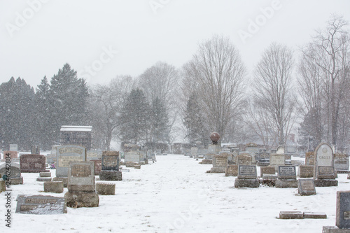 Snow Covered Cemetery Landscape with Snow Falling Wallpaper Mural