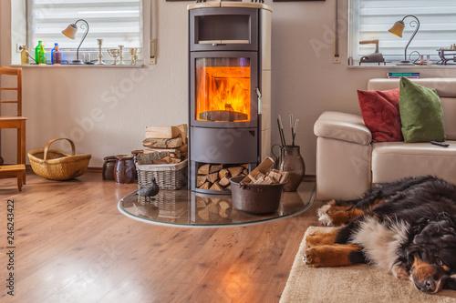 Fototapeta HDR brennender Kamin im Wohnzimmer mit schlafendem Hund davor obraz