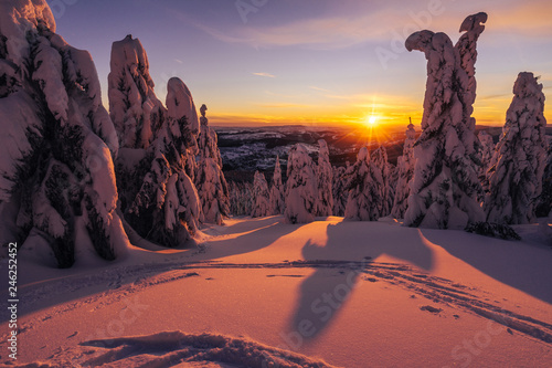 Stunning winter mountain landscape at sunset or sunrise. Low trees covered with snow, sun peaking on horizon, purple, orange and blue colors. Winter scandinavian like landscape.