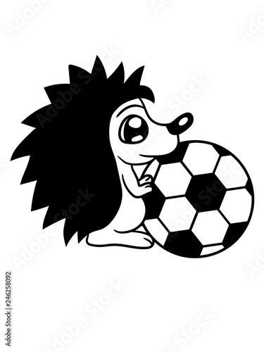 Spielen Fussball Ball Sport Verein Gefahrlich Platzen Kicker