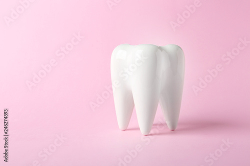 Fotografía  Ceramic model of tooth on color background. Space for text