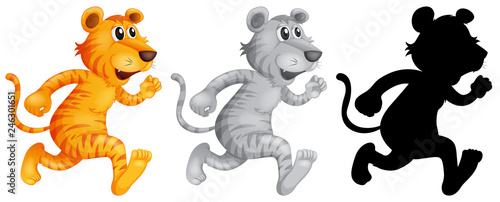 Set of tiger running