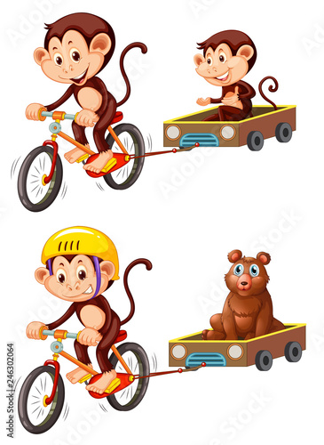 Monkey riding bicycle trailer