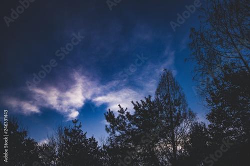 Foto op Aluminium Volle maan 夕暮れの風景