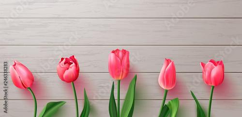 Obraz na plátně Beautiful realistic tulips on wooden background