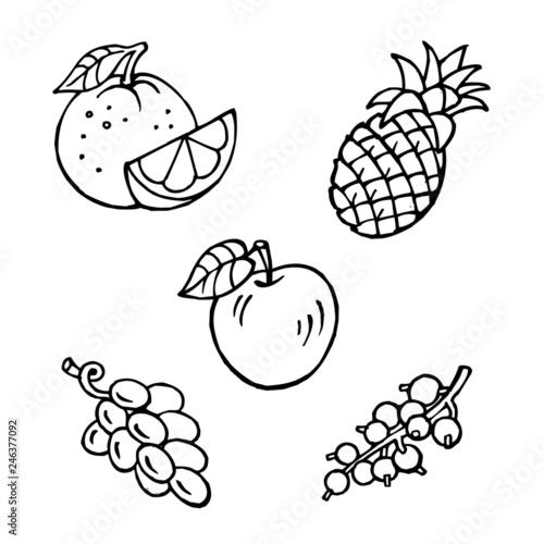 fruit set, apple, pineapple, orange, grapes, currant, black