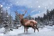 canvas print picture - Stolzer Hirsch steht im tiefen Schnee im Wald