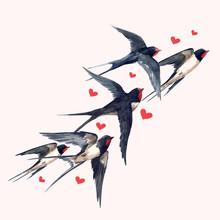 Watercolor Swallow Bird Composition