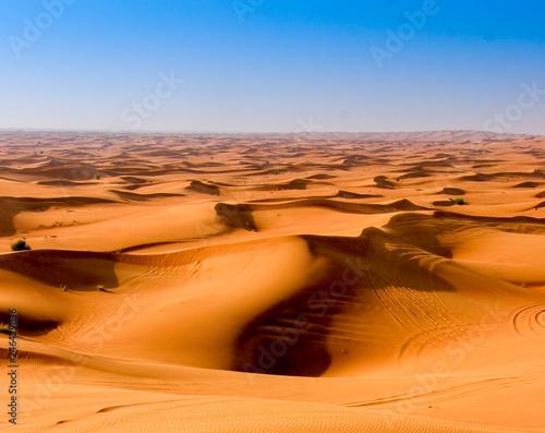Tuinposter Algerije sand dunes in the desert