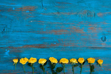 Frame Of Yellow Flowers On A Blue Wooden Background. Easter, Spring Flowers