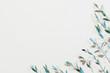 Leinwanddruck Bild - Plant pattern design. Creative minimalism. Fresh young stems on palegreen background.