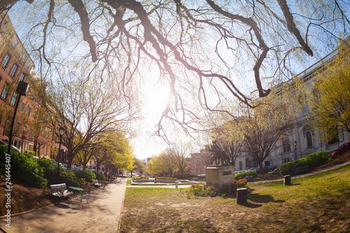 Fotobehang Amerikaanse Plekken East Garden and George Peabody statue in Baltimore