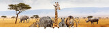 Fototapeta Sawanna - Africa Safari Animals Over Web Banner