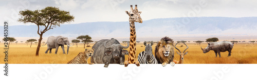 Photo sur Toile Girafe Africa Safari Animals Over Web Banner