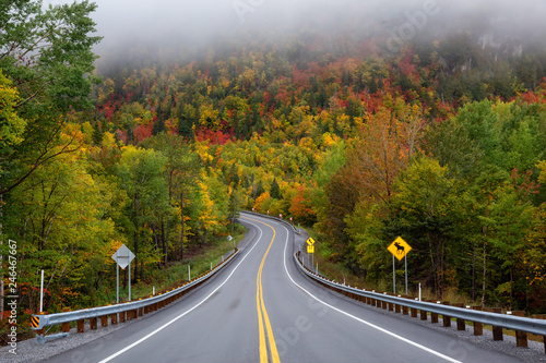 Scenic road in the mountains surrounded by vibrant Fall Color Trees. Taken in Forillon National Park, near Gaspé, Quebec, Canada.