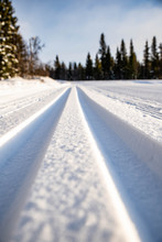 Cross-country Skiing Tracks In The Snow In The Forest In Norway, Scandinavia