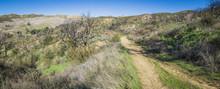 Offroad Trail In Wilderness Hills