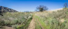 Trail In Green California Hills