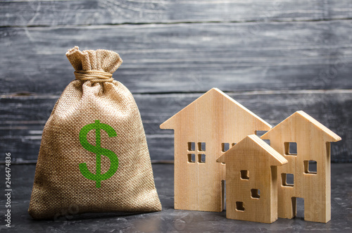 Fotomural  A bag with money and three houses