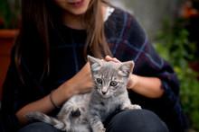Girl Kid Playing With Kitten