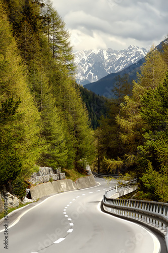 Fotografía  View of road through the Swiss national Park in sunny spring day