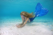 Mermaid Swims Under Water, Indian Ocean, Maldives, Asia