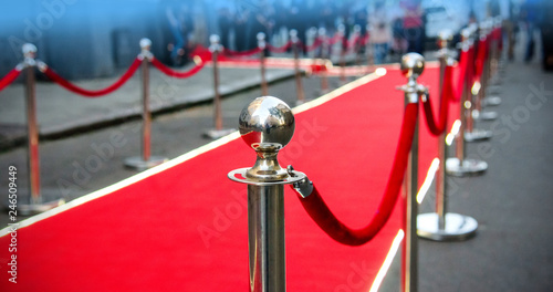Fotomural  red carpet and barrier on entrance