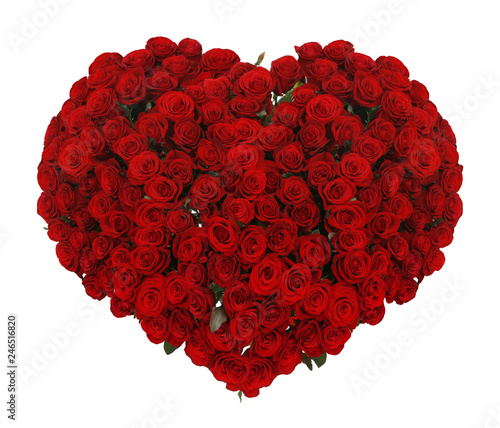 Huge heart made of beautiful red roses on white background © New Africa