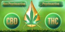 CBD Non-Psychoactive But THC P...