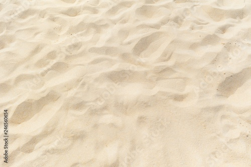 Photo Stands Stones in Sand sand texture on the beach
