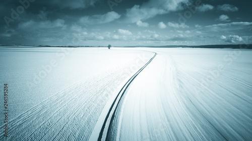 Stampa su Tela  Arbre isolé sur un fond de paysage enneigé
