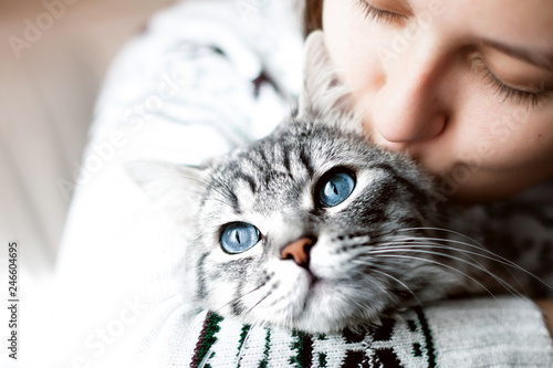 Young beautiful woman at home kissing and hug her lovely fluffy cat. Gray tabby cute kitten with blue eyes. Pets, friendship, trust, love, lifestyle concept. Friend of human. Animal lover. Close up. - 246604695