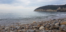 Fragment Of Stony Beach With M...