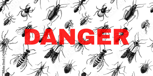 Fotografie, Obraz  Danger sign over seamless pattern with insects