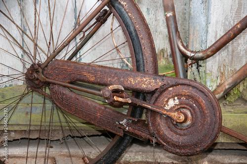 Verrostetes Fahrrad © Carl Brugger