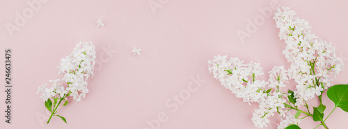 Pink background with white lilac flowers