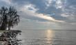 Shore. Sunrise. Lake. Leman. Trees. Stone. Sky