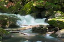 Small Stream Among The Rocks. ...