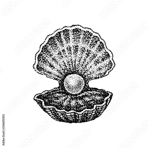 Fotografía  Dotwork Shell with Pearl