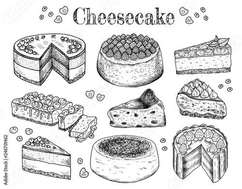 Wall Murals Newspapers Vector illustration of hand drawn sketch cheesecakes. Food, tasty dessert, slice, piece, cake with cheese. Cheesecake with berries and fruits. Doodle sweet bakery products. Vintage background. Menu.