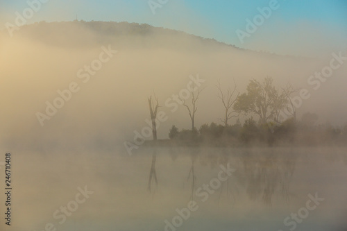 Foto auf Acrylglas Wald im Nebel Morning fog at Bundamba Dalys Lagoon, Queensland