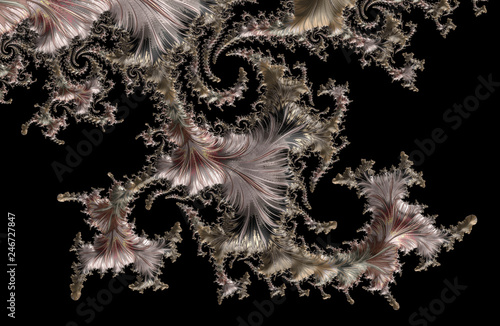 Photo Fractals are infinitely complex patterns that are self-similar across different scales